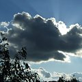 #drzewa #przyroda #natura #chmura