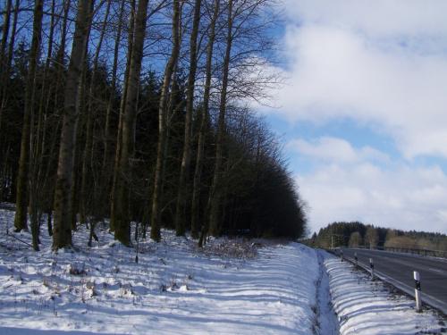 Drugi dzien powrotu zimy. #krajobrazy #zima #snieg