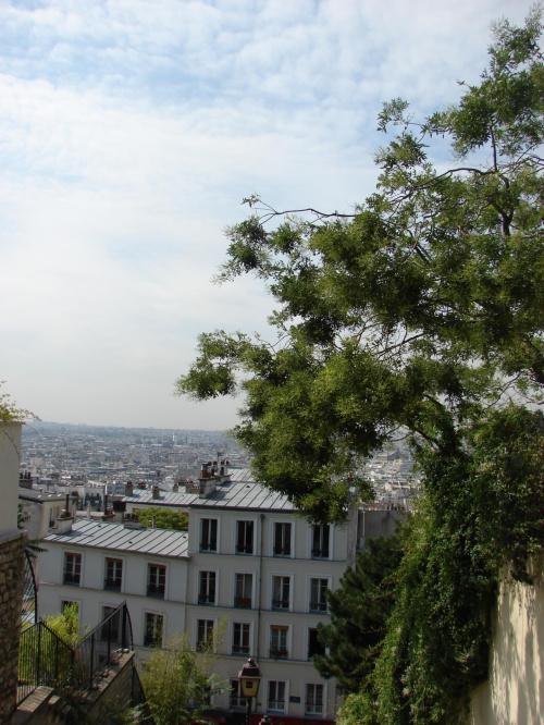 Paris 2007r. #Paryż #Francja #AvenueChampsElysse