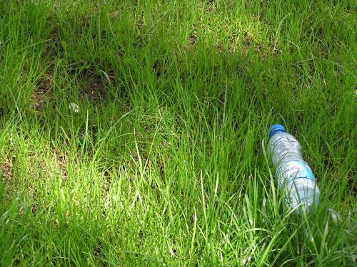 Trawa potrzebuje wody #woda #trawa