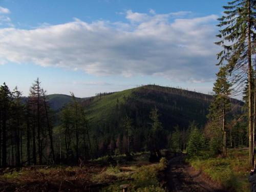 Widok na Zielony Kopiec #beskid #krajobraz #panorama #skrzyczne #zielony #kopiec