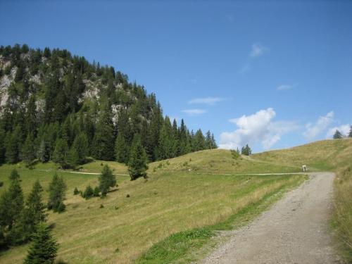 przeł. Pecol (1786 m) #góry #Dolomity #Włochy