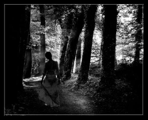 Taki eksperyment..dziekuje http://bja.digart.pl/ za udostepnienie zdjecia lasu....:) Zawsze podążaj w strone światła..